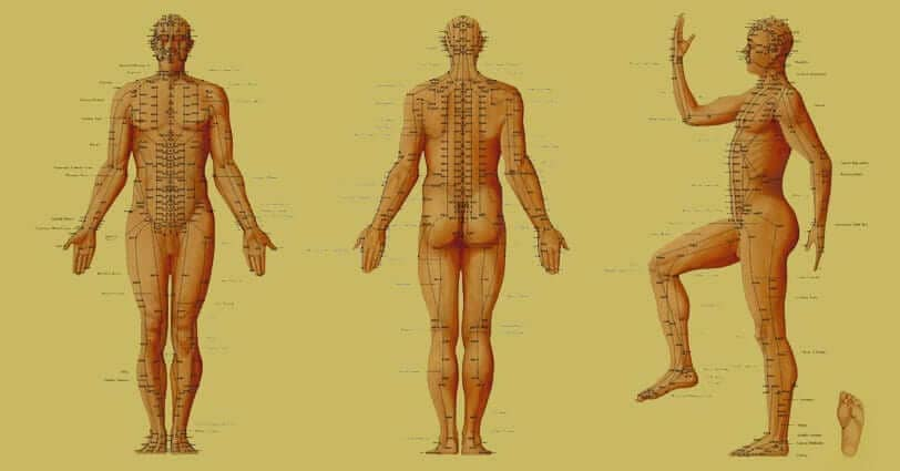 NYDNRehab Now Offers Acupuncture Services to Treat Orthopedic Disorders Blog  Acupuncture