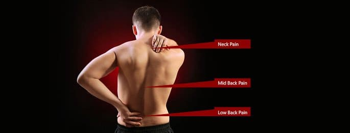 The Language of Back Pain Blog  Back pain