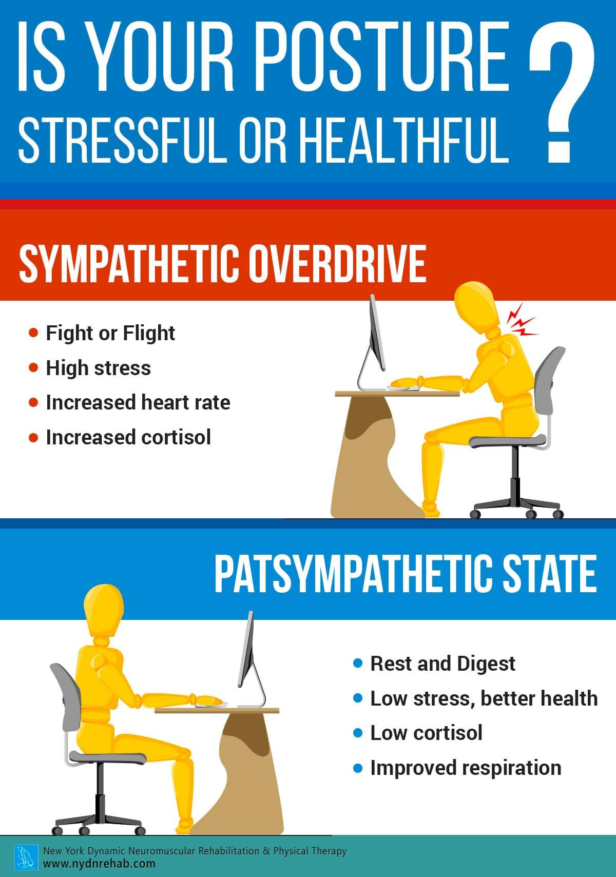 Is your posture stressful or healthful Blog