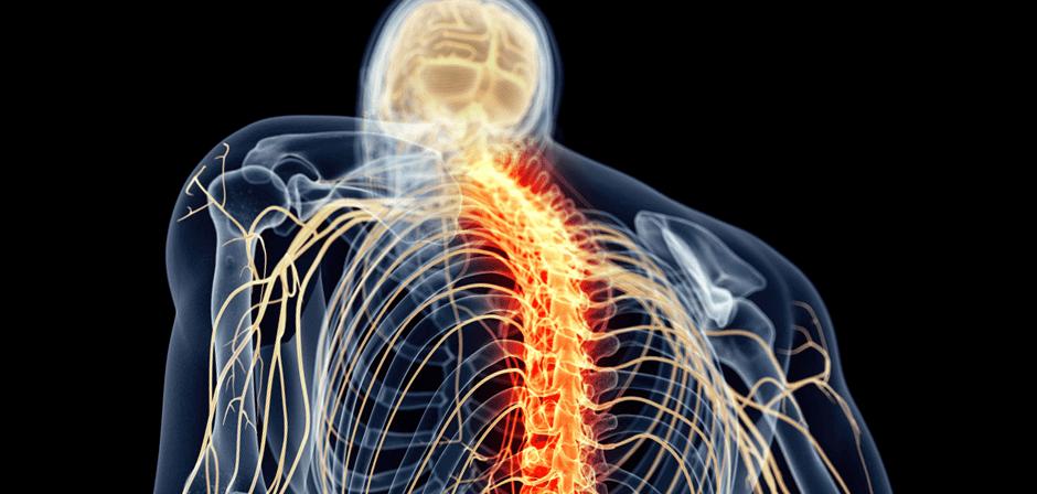 Central Sensitization: When Pain Just Won't Go Away Blog