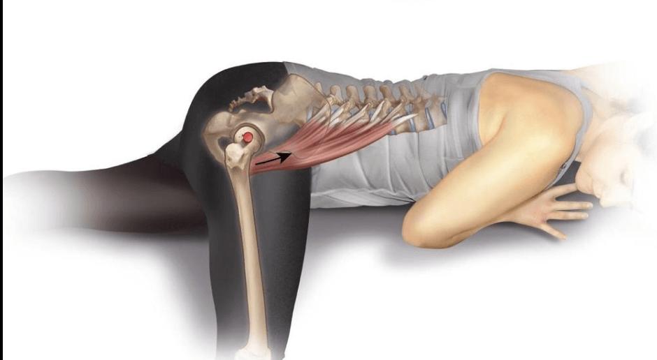 Healing and Rehabbing Hip Flexor Tendinosis - NYDNRehab.com